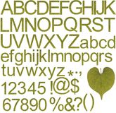 abecadeł charakterów zielone liczby specjalne Zdjęcia Stock