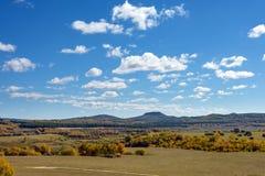 Abedul blanco en la ladera en el otoño Fotografía de archivo libre de regalías