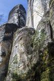 Abedul blanco que sube a lo largo de las formaciones de roca Imágenes de archivo libres de regalías