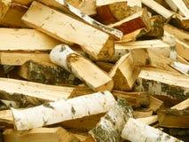 Abedul de madera del fuego Imagen de archivo