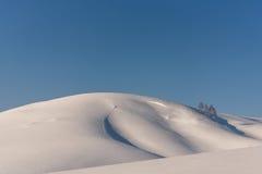 Abedul del cielo de la nieve de las colinas Fotos de archivo