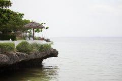 Abedul del mar reservado y tranquilo Fotos de archivo