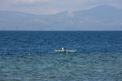 Abedul del mar reservado y tranquilo Imágenes de archivo libres de regalías