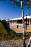 Abedul y patio Imagenes de archivo