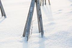 Abedules en la nieve en invierno Árboles bajo capa grande de nieve en invierno Fotos de archivo libres de regalías