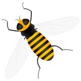 abeille Image libre de droits