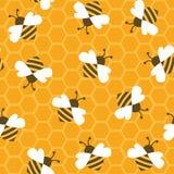 Abeille avec du miel Configuration sans joint Photographie stock libre de droits