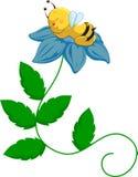 Abeille de chéri sur la fleur Photo stock