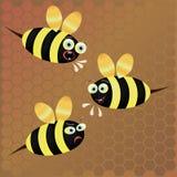 Abeille de vecteur sur le fond de nid d'abeilles Image libre de droits