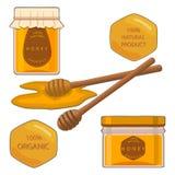 Abeille mangeant du miel Image stock