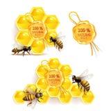 Abeilles avec des nids d'abeilles Image libre de droits