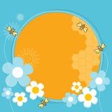 Abeilles de miel Photos libres de droits