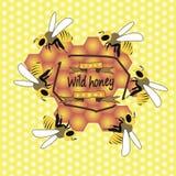 Abeilles et nids d'abeilles Images libres de droits