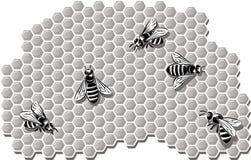Abeilles produisant le miel illustration libre de droits