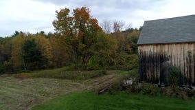 Abejón aéreo - árboles coloreados vibrantes de Pan Past Old Barn Towards en caída en Vermont 4K almacen de video