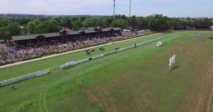 Abejón aéreo 4k Dresden de Pferderennbahn del circuito de carreras del caballo almacen de video