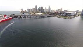 Abejón céntrico de Miami de la antena almacen de video