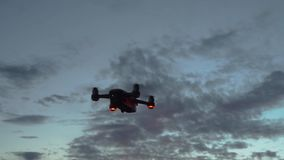 Abejón contra el cielo en la puesta del sol almacen de video