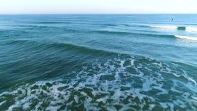 Abejón del mar y de la orilla que sigue al revés almacen de metraje de vídeo