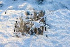 Abejón del vuelo con la cámara, escena del invierno Imágenes de archivo libres de regalías