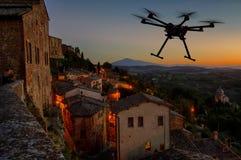 Abejón del vuelo en los cielos de la puesta del sol Imagen de archivo