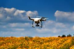 Abejón en el cielo fotografía de archivo libre de regalías