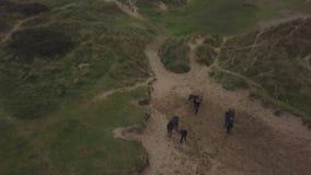 Abejón que captura el vídeo del aire de una gente con los caballos que consiguen tener un paseo, a través del campo verde almacen de video