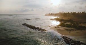 Abejón que vuela adelante a lo largo de la playa tropical exótica increíble de la salida del sol, ondas que alcanzan la línea de  almacen de video