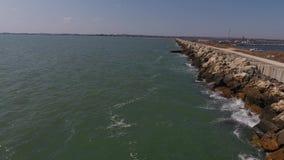 Abejón sobre la orilla del mar metrajes