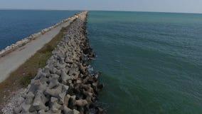 Abejón sobre la orilla del mar almacen de metraje de vídeo