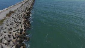 Abejón sobre la orilla del mar