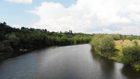Abejón tirado de un río en zona de clima templado Europa, Ucrania, Vinnytsia a?reo almacen de video
