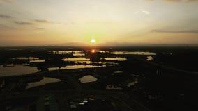 Abejón tirado de una puesta del sol Fotos de archivo