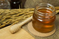 Abeja de la miel en la botella de cristal en la tabla de madera Fotografía de archivo libre de regalías