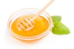 Abeja de la miel en un recorte blanco del fondo Imagenes de archivo