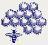 Abeja de trabajo en honeycells Imagenes de archivo