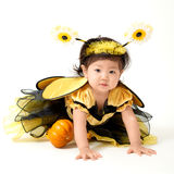 Abeja del bebé lista para Halloween Imagen de archivo