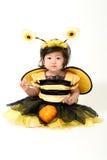 Abeja del bebé lista para Halloween Imagen de archivo libre de regalías
