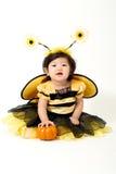 Abeja del bebé lista para Halloween Fotografía de archivo libre de regalías