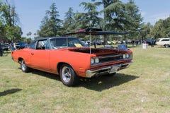 Abeja estupenda de Dodge en la exhibición Fotos de archivo