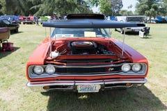 Abeja estupenda de Dodge en la exhibición Fotografía de archivo libre de regalías