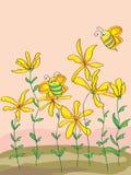 Abeja linda de las flores salvajes Fotografía de archivo