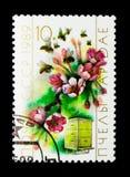 Abeja (mellifica de los Apis), flores y colmena, serie de la apicultura, c Fotos de archivo
