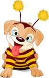 Abeja-perro de Víspera de Todos los Santos Fotos de archivo
