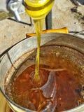 Abeja sana fresca de los productos naturales de la miel Fotos de archivo
