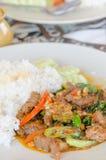 Abeja y arroz sofritos Imagen de archivo libre de regalías