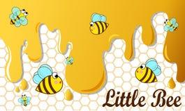 Abeja y miel Imagen de archivo