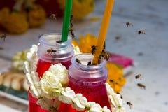 Abejas aterrizadas en una botella de jugo Fotos de archivo libres de regalías