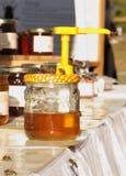 Abejas de la miel Fotos de archivo