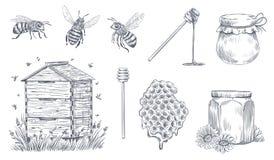 Abejas de la miel que graban Apicultura exhausta de la mano, granja de la miel del vintage y sistema enmelado del ejemplo del vec ilustración del vector